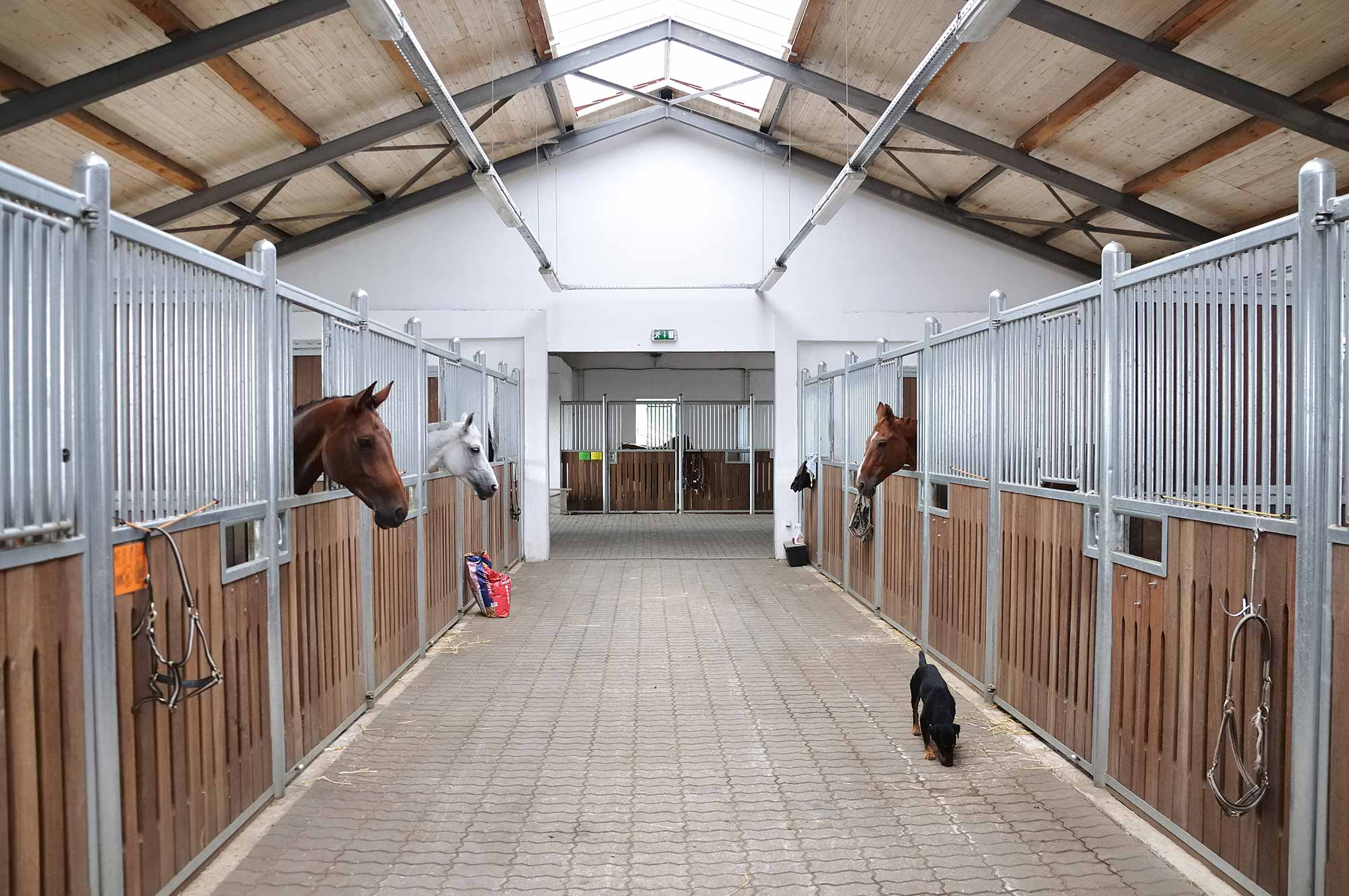 Stable panelling